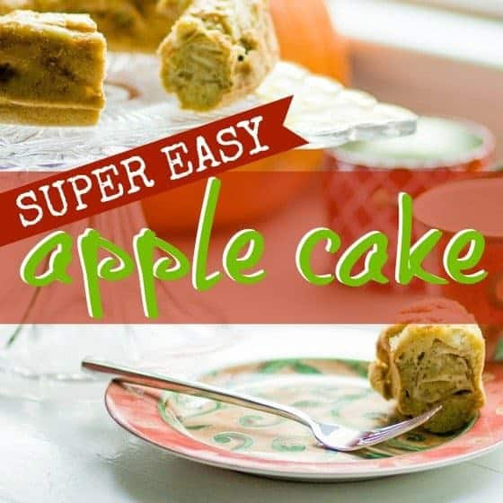 Super Easy Apple Cake