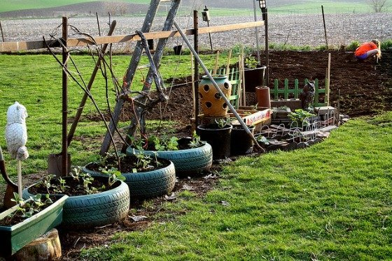 Grow Greener! 3 Garden Ideas From Repurposed Household Items 2 Daily Mom Parents Portal