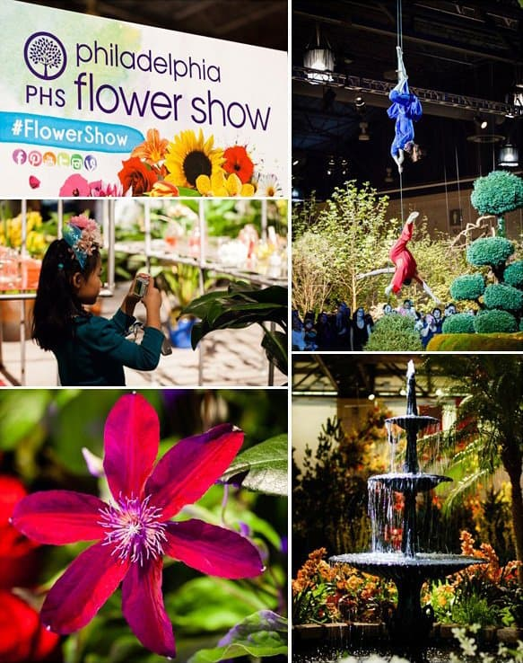 Fun for Families: Philadelphia Flower Show 2 Daily Mom Parents Portal