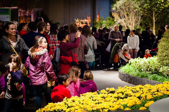 Fun for Families: Philadelphia Flower Show 6 Daily Mom Parents Portal