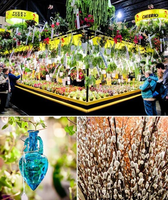 Fun for Families: Philadelphia Flower Show 22 Daily Mom Parents Portal