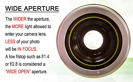 Getting to Know Your Camera: Aperture Basics 1 Daily Mom Parents Portal