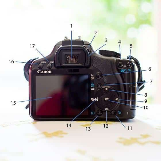 GETTING TO KNOW YOUR NIKON CAMERA: DSLR BUTTONS 1 Daily Mom Parents Portal