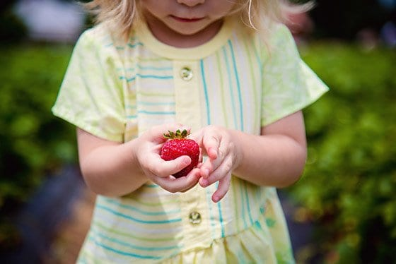 5 Tips For Encouraging Healthy Eating Habits Early 5 Daily Mom Parents Portal