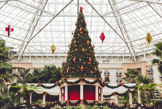 Celebrating the Holidays with Gaylord Palms Orlando 14 Daily Mom Parents Portal