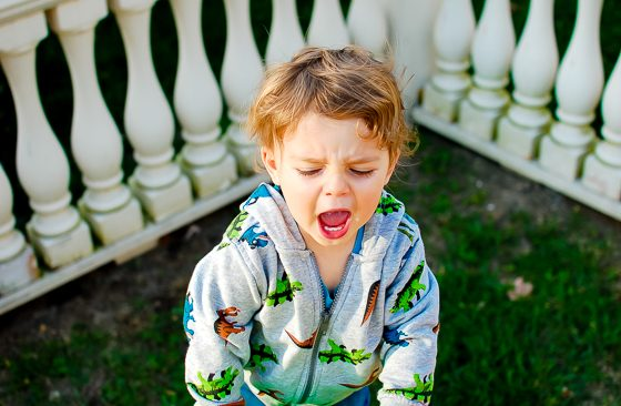 8 Ways to Deal with the (Almost) Terrible Twos 2 Daily Mom Parents Portal