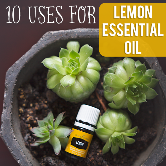 10 Uses for Lemon Essential Oil 6 Daily Mom Parents Portal