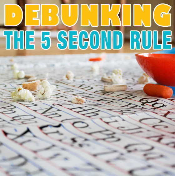 Debunking the 5 Second Rule 4 Daily Mom Parents Portal