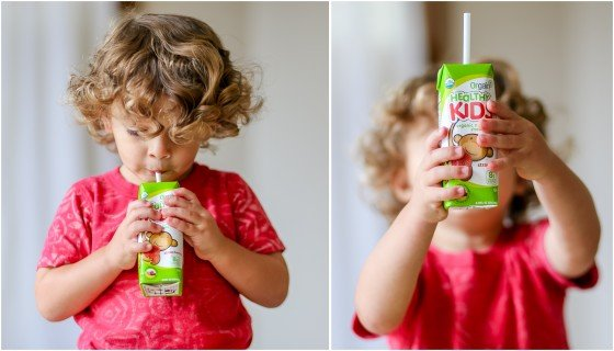 10 Quick and Healthy Snacks for Toddlers 17 Daily Mom Parents Portal