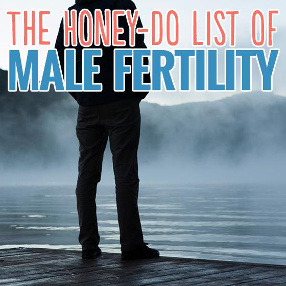 THE HONEY-DO LIST OF MALE FERTILITY 6 Daily Mom Parents Portal