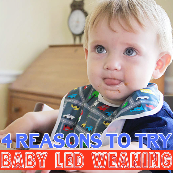4 Reasons to Try Baby Led Weaning 5 Daily Mom Parents Portal