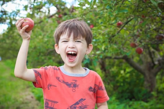 5 Ways to Explain Vegetarianism to Kids 1 Daily Mom Parents Portal