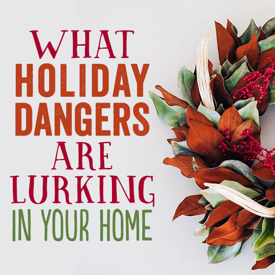 WHAT HOLIDAY DANGERS ARE LURKING IN YOUR HOME? 4 Daily Mom Parents Portal