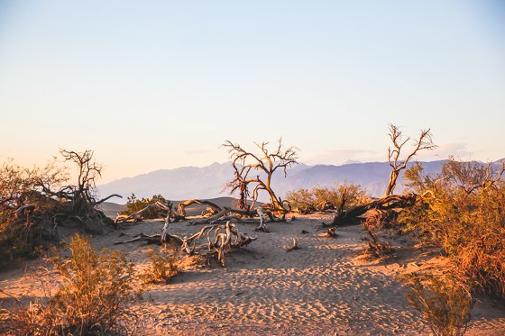 11 Photos That Will Make You Want to Visit Death Valley 5 Daily Mom Parents Portal