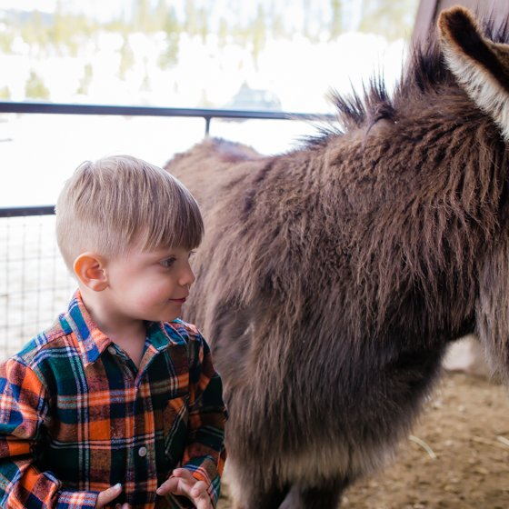 Family Fun Weekend Guide to Winter Park, Colorado 17 Daily Mom Parents Portal
