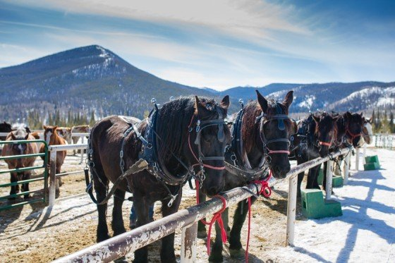 Family Fun Weekend Guide to Winter Park, Colorado 12 Daily Mom Parents Portal
