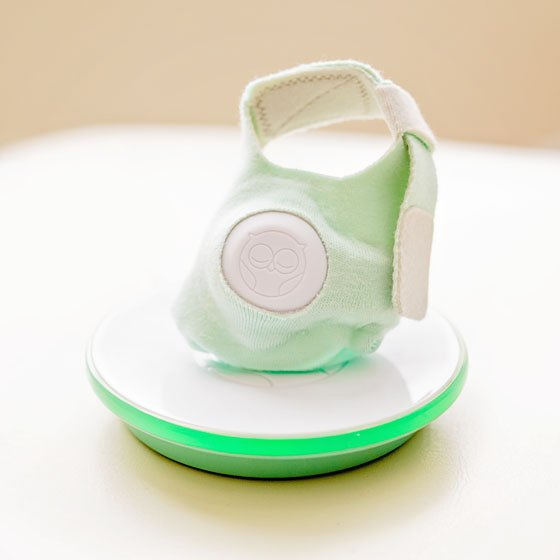 Baby Monitor Guide: Owlet Baby Care Vitals Monitor 7 Daily Mom Parents Portal