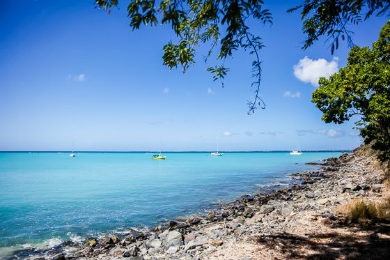 Everything You Must See on an Eastern Caribbean Cruise 25 Daily Mom Parents Portal