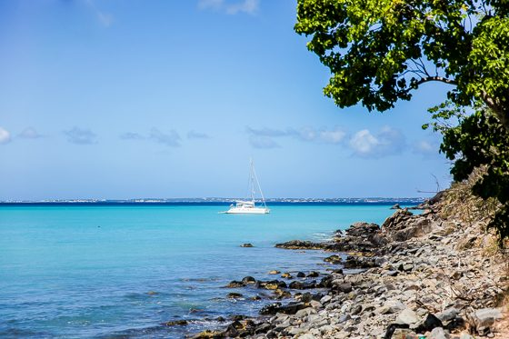 Everything You Must See on an Eastern Caribbean Cruise 28 Daily Mom Parents Portal