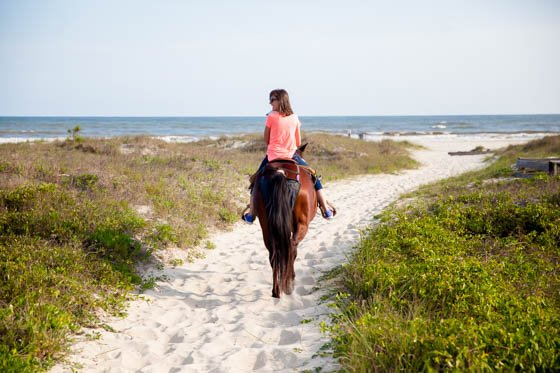 Adventure Awaits in Gulf County, Florida 30 Daily Mom Parents Portal