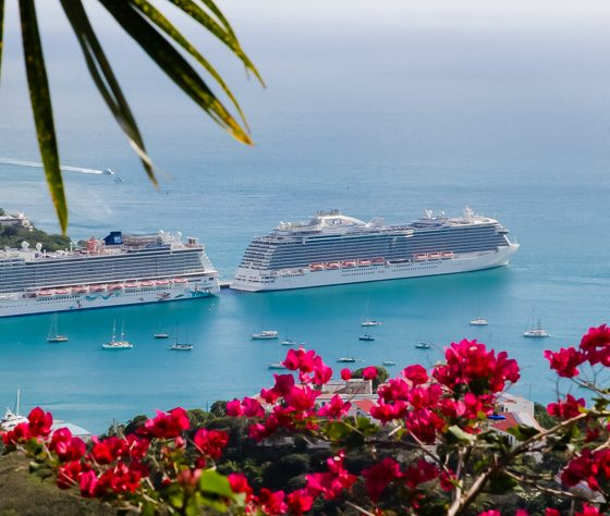 Everything You Must See on an Eastern Caribbean Cruise 19 Daily Mom Parents Portal