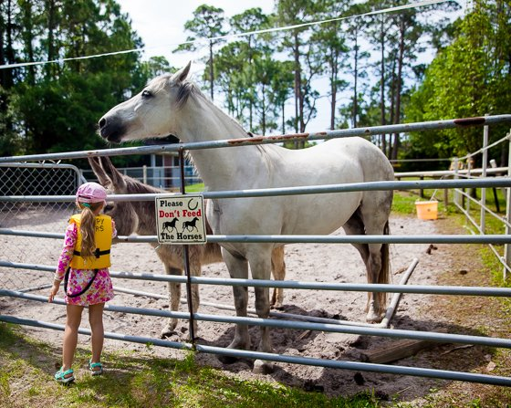 Adventure Awaits in Gulf County, Florida 35 Daily Mom Parents Portal