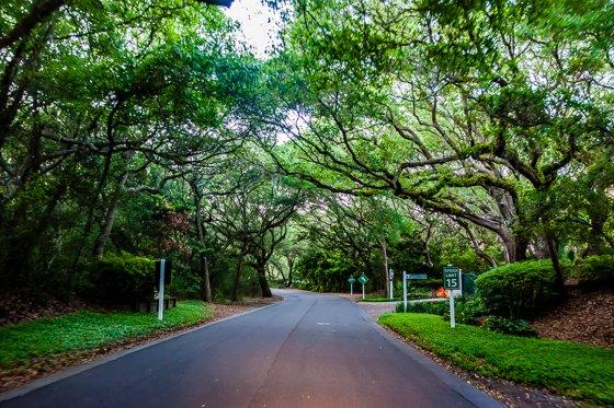 plantation streets
