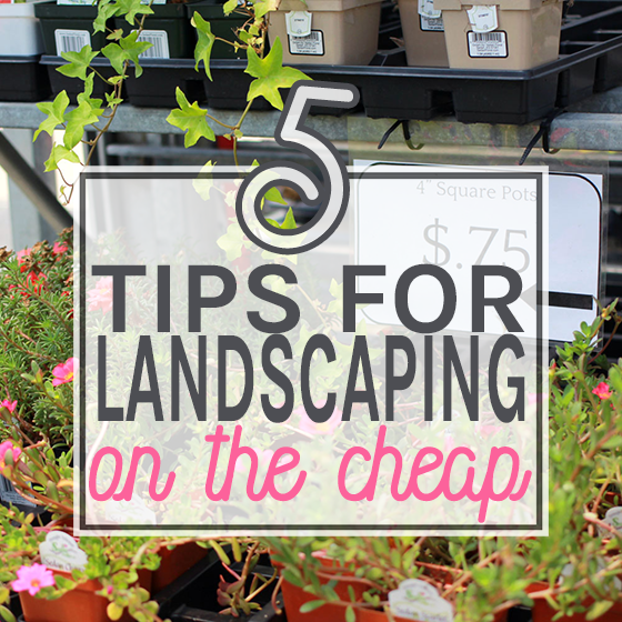 5 Tips for Landscaping on the Cheap 1 Daily Mom Parents Portal