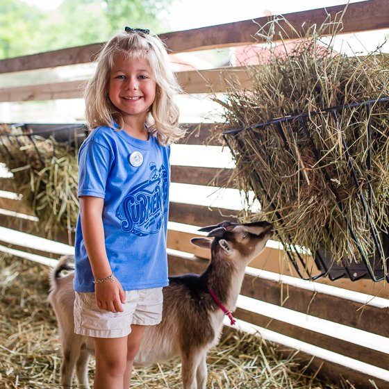 A Beginner's Guide to Homesteading 32 Daily Mom Parents Portal