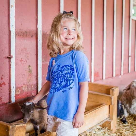 A Beginner's Guide to Homesteading 33 Daily Mom Parents Portal