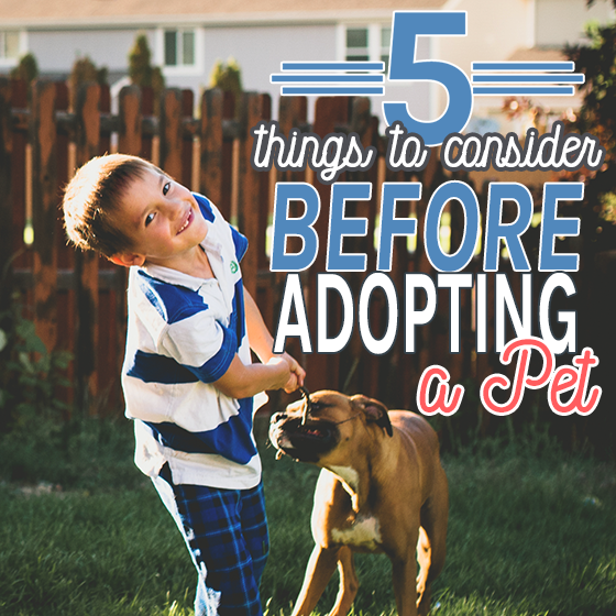 5 THINGS TO CONSIDER BEFORE ADOPTING A PET 1 Daily Mom Parents Portal