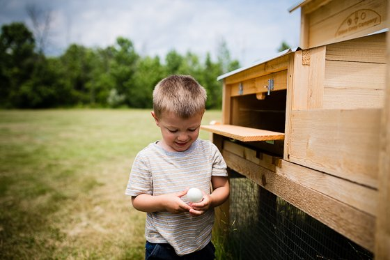 A Beginner's Guide to Homesteading 28 Daily Mom Parents Portal