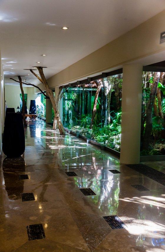 Grand Velas: One Resort, Endless Experiences 15 Daily Mom Parents Portal