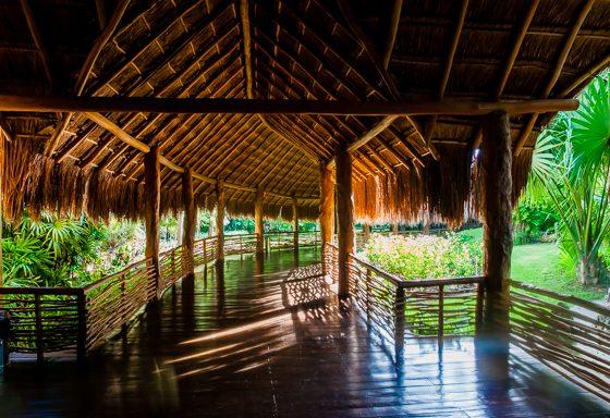 Grand Velas: One Resort, Endless Experiences 48 Daily Mom Parents Portal