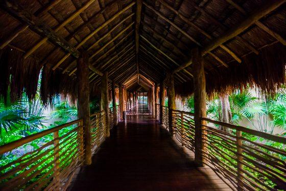 Grand Velas: One Resort, Endless Experiences 51 Daily Mom Parents Portal