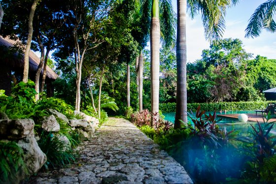 Grand Velas: One Resort, Endless Experiences 38 Daily Mom Parents Portal
