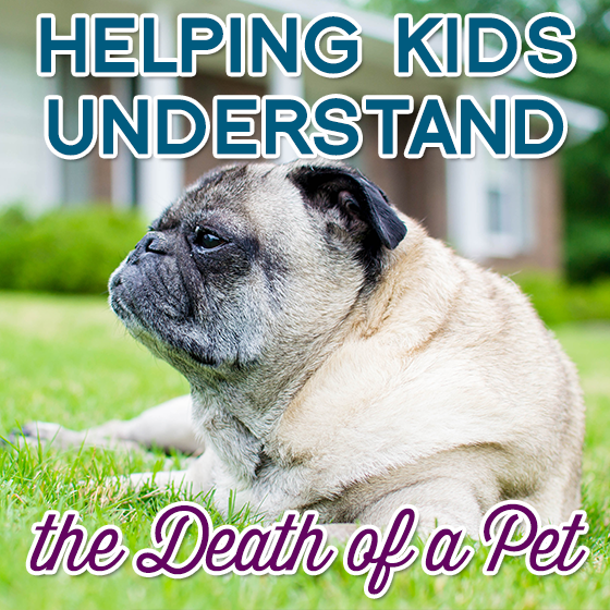 Helping Kids Understand the Death of a Pet 6 Daily Mom Parents Portal