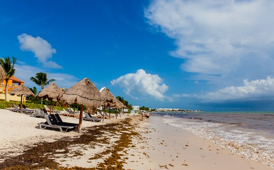 Ocean Coral Turquesa by H10: A Remarkable Resort in Riviera Maya 20 Daily Mom Parents Portal