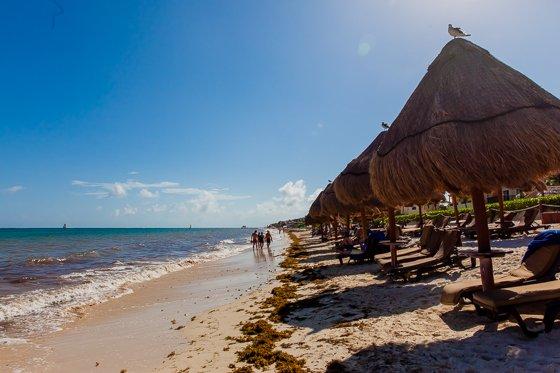 Ocean-Coral-Turquesa-H10-Resort_20000101_IMG_8624