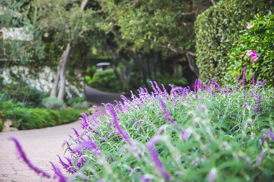 San Isidro Ranch: A Private Retreat in Santa Barbara 7 Daily Mom Parents Portal