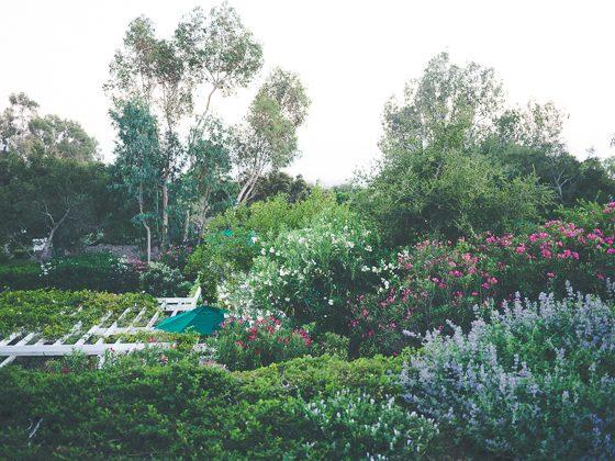 San Isidro Ranch: A Private Retreat in Santa Barbara 2 Daily Mom Parents Portal
