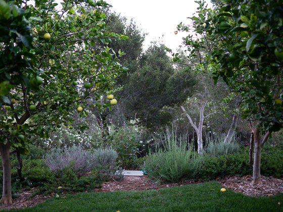 San Isidro Ranch: A Private Retreat in Santa Barbara 27 Daily Mom Parents Portal