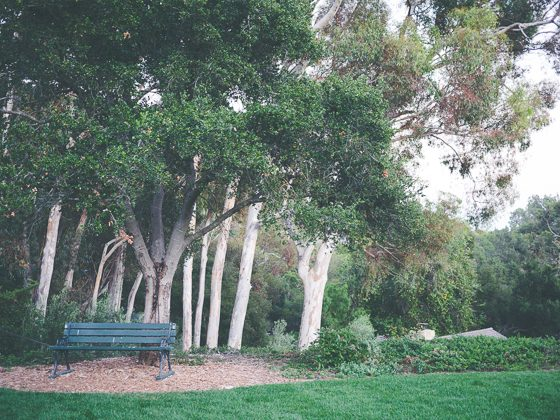 San Isidro Ranch: A Private Retreat in Santa Barbara 26 Daily Mom Parents Portal