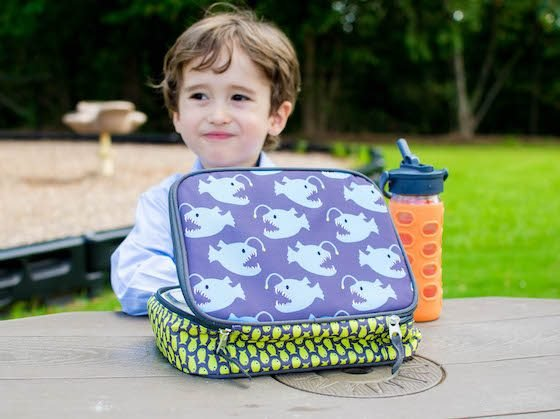 Back to School: Lunchbox Gear 25 Daily Mom Parents Portal