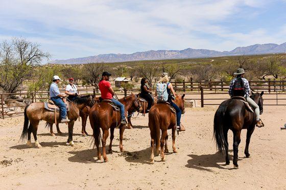 5 Days in Southwestern Arizona 33 Daily Mom Parents Portal