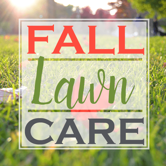 Fall Lawn Care 6 Daily Mom Parents Portal