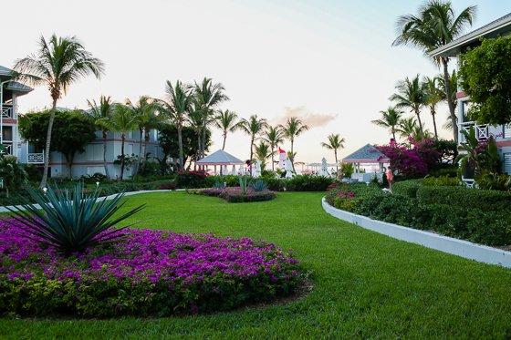 Escape the Winter Blues at Ocean Club Resorts: Turks & Caicos 16 Daily Mom Parents Portal