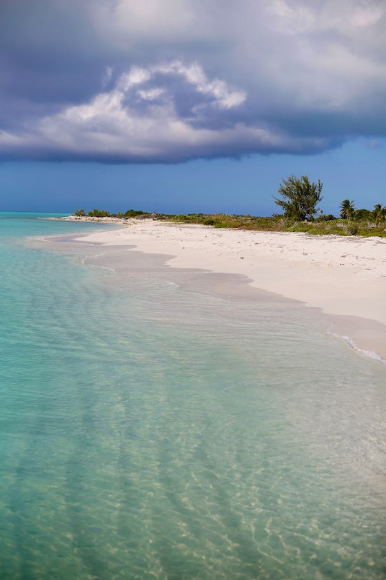 Escape the Winter Blues at Ocean Club Resorts: Turks & Caicos 3 Daily Mom Parents Portal