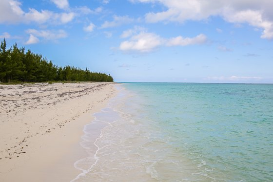 Escape the Winter Blues at Ocean Club Resorts: Turks & Caicos 2 Daily Mom Parents Portal