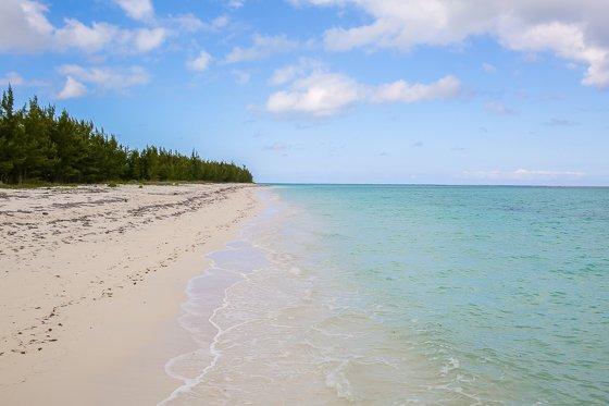Escape the Winter Blues at Ocean Club Resorts: Turks & Caicos 2 Daily Mom Parents Portal